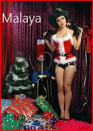 http://www.smittenkittens.net/Journal/wp-content/uploads/2019/12/malaya1.jpg